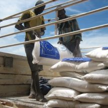 EU aid for African Great Lakes region may be too expensive, say auditors