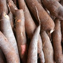 One admitted, 4 die after consuming cassava
