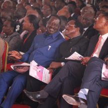 I have no apologies for my remarks, Raila