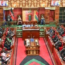 Slash MCAs and MPs numbers, audit committee recommends