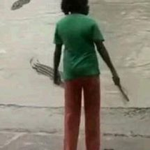 Woman warns off crocodile with flip flop, Video