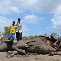 Urgent aid needed over the retrograding Garissa drought