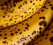 The mystery behind black-spotted bananas