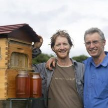 Flow Hive, fear of bee biting while harvesting honey solved