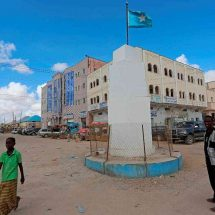 U.S. air strike in Somalia killed local militia, not al Shabaab