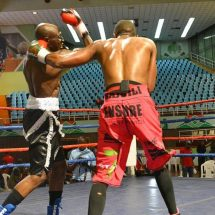 Kenyan  boxers sparkle but Adie calls for full purse