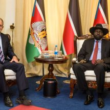 UN mission chief meets President Kiir, pledges commitment to regional force