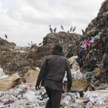 Ban on plastic carrier bags attracts mixed reactions