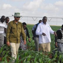 Irrigation gets Sh6.3bn in budget