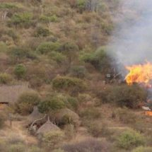 Are Kenya ranch invasions driven by drought or politics?