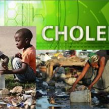 Cholera Outbreak In The Metropolitan