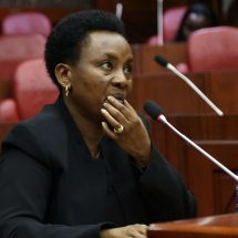 Criminal proceedings against DCJ suspended by Chief magistrates court